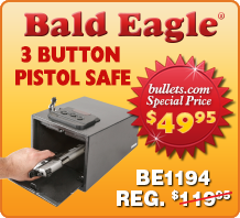 BE1194 Pistol Safe